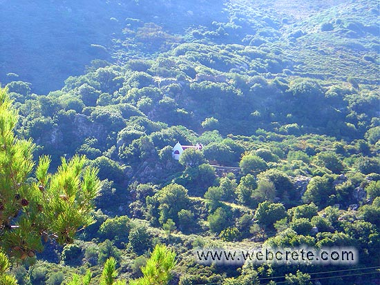 Hiking in Sitia: Bebonas – Kavousi