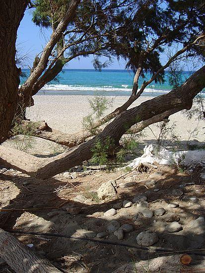 Sitia Beach