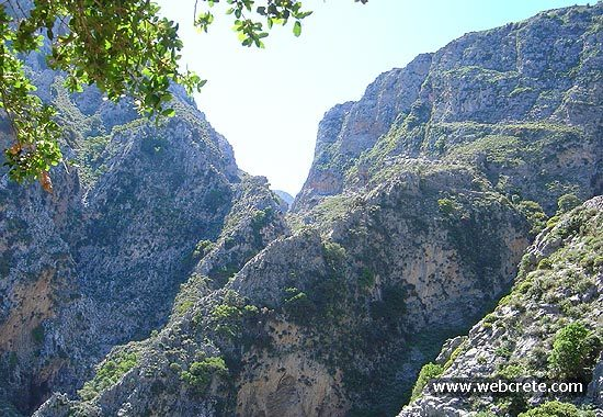 Kavousi-Mesonas Gorge-Thripti