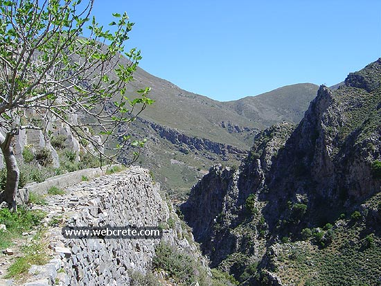 Kavousi – Mesonas gorge