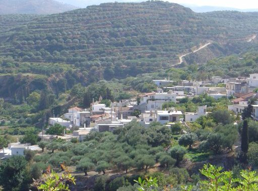 Maronia