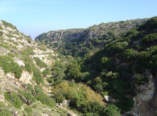 Agii Pandes Gorge