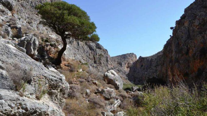 Chohlakies Or Karoumes Gorge